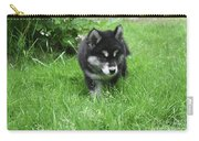 Beautiful Alusky Puppy Dog Walking Through Thick Green Grass Carry-all Pouch