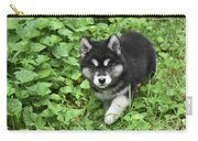 Beautiful Alusky Puppy Peaking Out Of Green Foliage Carry-all Pouch
