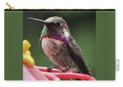 Beautiful Anna's Hummingbird On Perch Carry-all Pouch
