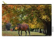 Beautiful Bay Horse In Fall Carry-all Pouch