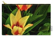 Beautiful Bicolor Tulips Carry-all Pouch