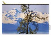 Beautiful Birches Carry-all Pouch
