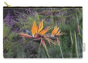 Beautiful Bird Of Paradise Flower In Bloom Carry-all Pouch