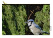 Beautiful Blue Jay Carry-all Pouch