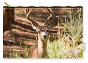 Beautiful Buck Deer In The Pike National Forest Carry-all Pouch