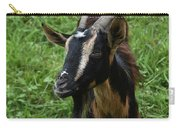 Beautiful Face Of A Billy Goat With Tan And Black Silky Fur Carry-all Pouch