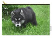 Beautiful Face Of A Black And White Alusky Puppy Carry-all Pouch