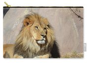 Beautiful Face Of A Lion In The Warm Sunshine Carry-all Pouch