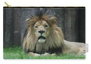 Beautiful Face Of A Male Lion With A Thick Fur Mane Carry-all Pouch