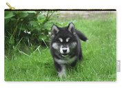 Beautiful Face Of An Alusky Puppy Dog In Thick Green Grass Carry-all Pouch