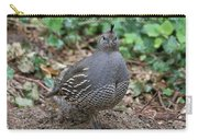 Beautiful Female Quail Carry-all Pouch