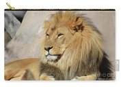 Beautiful Golden African Lion Relaxing In The Sunshine Carry-all Pouch