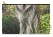 Beautiful Gray Wolf Carry-all Pouch