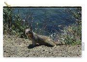 Beautiful Ground Squirrel Standing At The Edge Of The Coast Carry-all Pouch