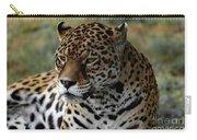 Beautiful Jaguar Portrait Carry-all Pouch