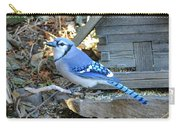 Beautiful Jay Carry-all Pouch