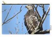 Beautiful Juvenile Eagle Carry-all Pouch