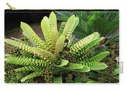 Beautiful Lime Bromeliad Carry-all Pouch