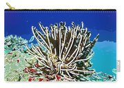 Beautiful Marine Plants 11 Carry-all Pouch by Lanjee Chee