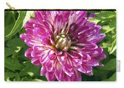 Beautiful Pink And White Dahlia Carry-all Pouch