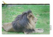 Beautiful Profile Of A Resting Lion In Green Grass Carry-all Pouch