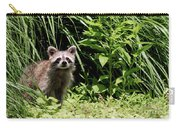 Beautiful Racoon Carry-all Pouch