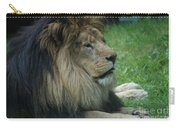 Beautiful Resting Lion In Tall Green Grass Carry-all Pouch