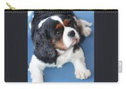 Beautiful Spaniel Carry-all Pouch