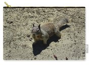Beautiful Squirrel Standing In A Sandy Area In California Carry-all Pouch