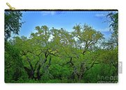 Beautiful Texas View 2 Carry-all Pouch