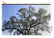 Beautiful Tree Blue Sky Sunshine Carry-all Pouch