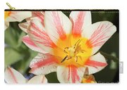 Beautiful Tulip With A Yellow Center And Pink Striped Petals Carry-all Pouch