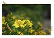 Beautiful Vibrant Yellow Lily Flower In Summer Sun Carry-all Pouch