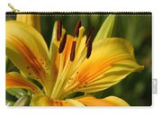 Beautiful Yellow Lily Carry-all Pouch