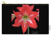 Beauty Of The Amaryllis Carry-all Pouch
