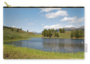 Beauty Swan Lake  Carry-all Pouch
