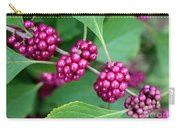 Beautyberry Bush Carry-all Pouch