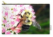 Bee-line 2 Carry-all Pouch