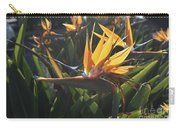 Bee Resting On The Petals Of A Bird Of Paradise  Carry-all Pouch