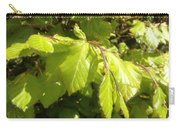 Beech Hedge In Spring Carry-all Pouch