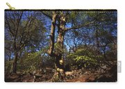 Beech Trees Coming Into Leaf  In Spring Padley Wood Padley Gorge Grindleford Derbyshire England Carry-all Pouch