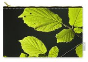 Beech Twig Detail Carry-all Pouch