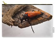 Beetle Pondering Carry-all Pouch