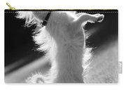 Begging Dog Black And White Carry-all Pouch
