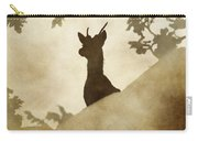 Behind The Rocks At Dawn Carry-all Pouch