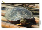 Behold The Turtle Carry-all Pouch