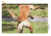 Belgian Shepherd Dog Carry-all Pouch