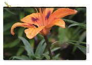 Bellevue Botanical Garden Tiger Lilly 6398 Carry-all Pouch