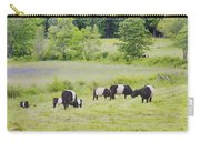 Belted Galloway Cows Rockport Maine Poster Prints Carry-all Pouch