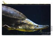 Beluga Sturgeon No 2 Carry-all Pouch
